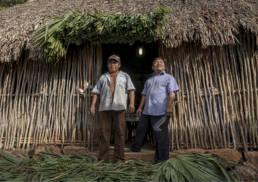 tren-maya-impacto-ambiental-defensa-territorio